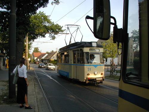 P8100026