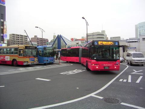 Rimg3176